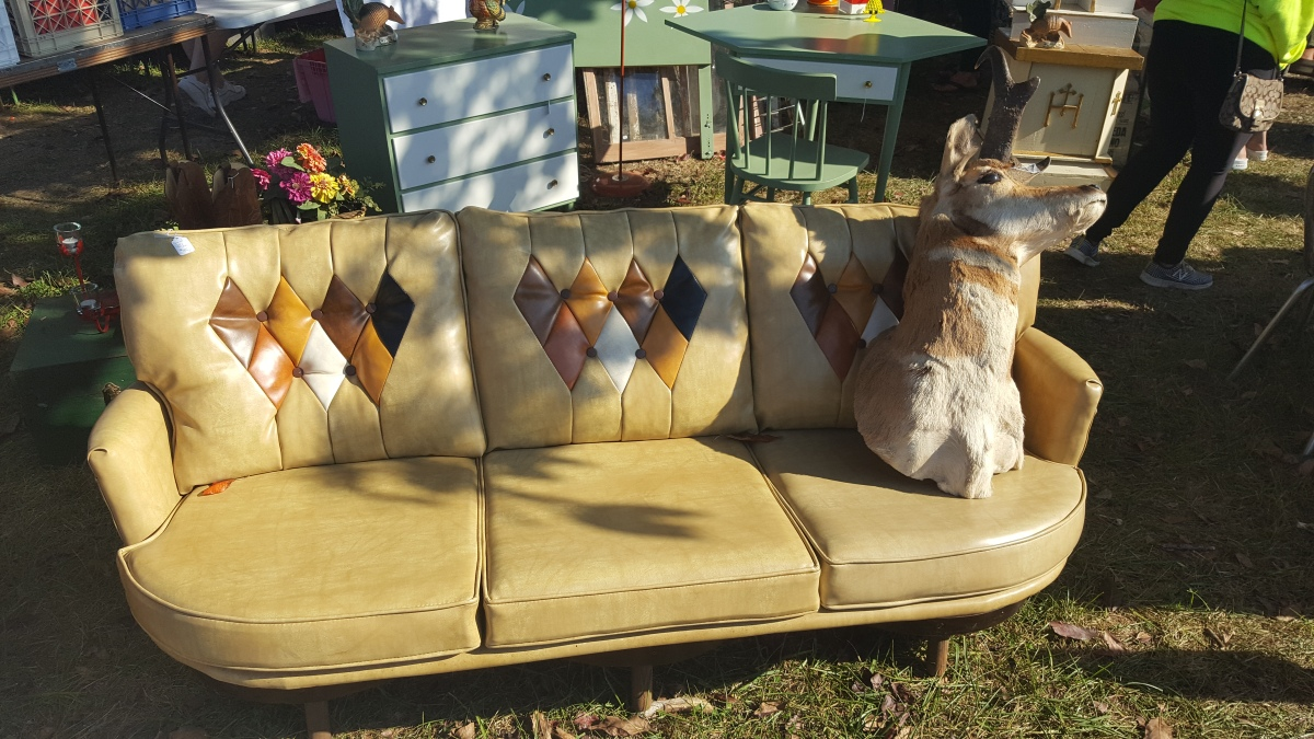 couch-with-antelope